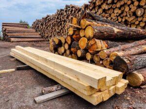 Часті учасники електронних аукціонів з продажу необробленої деревини